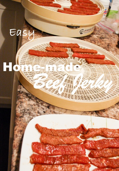 mommyoutnumbered.com easy homemade beef jerky recipe