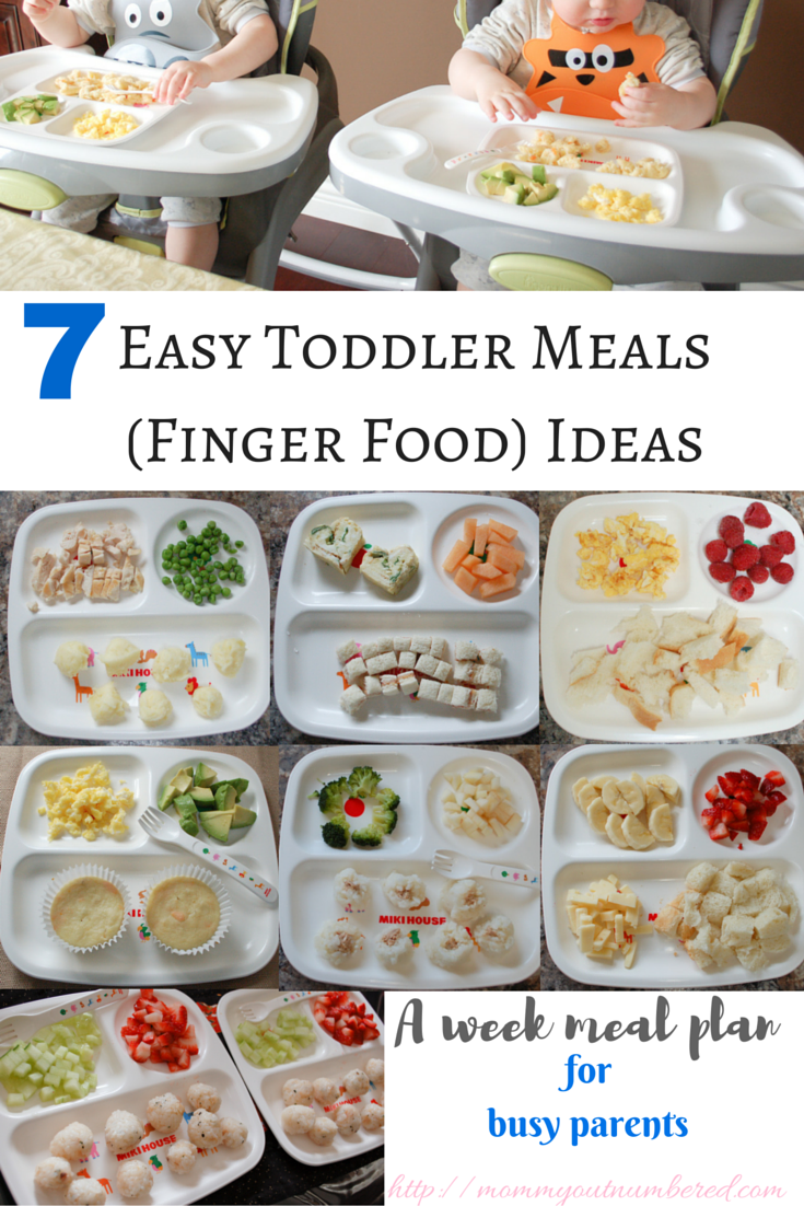 Finger Food Dinner Ideas For  Year Old